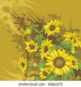 Floral background with a bunch of sunflowers and grunge details, vector illustration series.