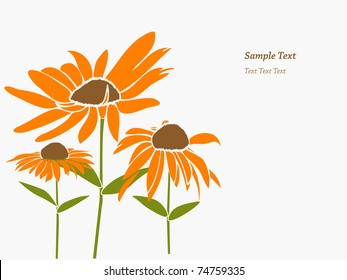 floral background with daisy flowers