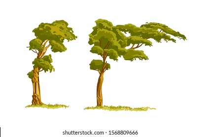 Cartoon Tree Images Stock Photos Vectors Shutterstock Tree branches with pink flowers. https www shutterstock com image vector floral background design cartoon style trees 1568809666