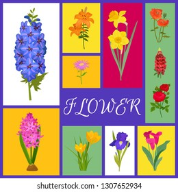 Floral background for flower shops or invitation cards. Flower banner vector illustration. Different colorful cartoon flowers such as roses, daffodil, poppy, tulip, iris, daylily, gerbera.