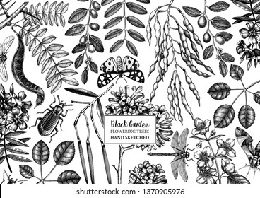 Floral background. Flowering trees with insects design. Hand sketched botanical and entomological elements. Vintage garden plant drawing. Vector template in engraved style. Outlines.