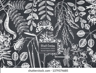 Floral background. Flowering trees with insects design. Hand drawn botanical elements. Vintage garden plants drawings. Vector template in engraved style. Flowers Outlines. On chalkboard.