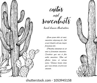 Floral background. Hand drawn vector botanical illustration. Template greeting card, wedding invitation banner with spring flowers. Sketch linear cactus ans succulents . Engraved style illustration.