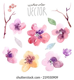 Floral background, watercolor painting vector