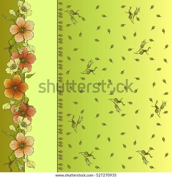Floral Border Design Yellow Red Wild Stock Vector Royalty Free