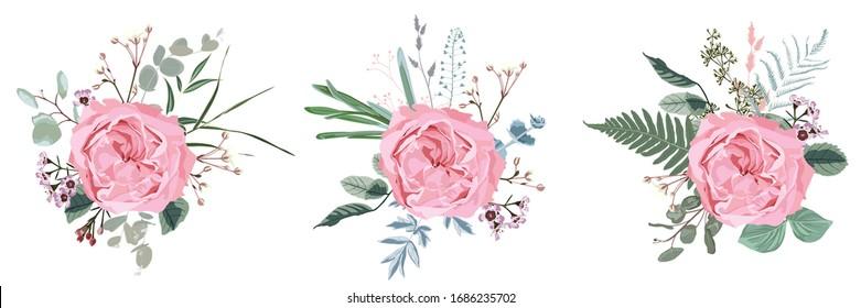 Floral bouquet design: garden pink  Rose flower, Eucalyptus branch greenery leaves berry. Wedding  invite card. Designer element set. White background.