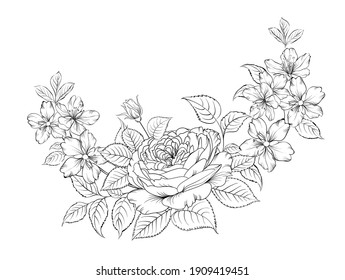 Floral bouquet on white background. Vector illustration