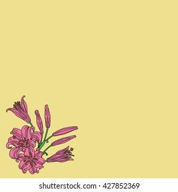 Floral card design, flowers and leaf doodle elements. Illustration made of flowers and herbs. Vector decorative invitation. Spring elements. Floral doodles.