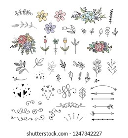 Floral collection. Vector flowers, leaves, arrows and decorative elements. Botanical clipart