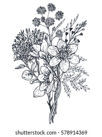 Floral composition. Bouquet with hand drawn flowers and plants. Monochrome vector illustration in sketch style.
