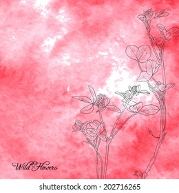 Floral composition with line drawing clover at green watercolor background, wild flowers at green abstract background, hand drawn vector illustration