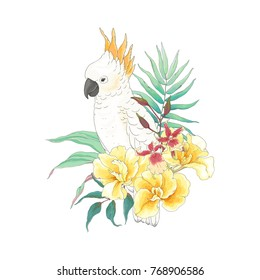 Floral decoration with flowers Canna Tropicanna, orchid, leaves and white parrot Cockatoo. Vector illustration in vintage style.