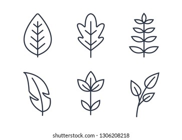 Floral Decoration Line Icon. Thin line style Floral Icon.