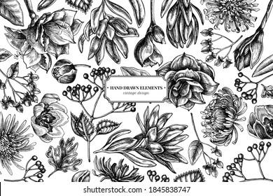 Floral design with black and white viburnum, hypericum, tulip, aster, leucadendron, amaryllis