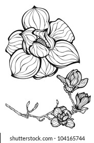 Floral design element with fantastic flowers, hand drawn original style black and white vector illustration