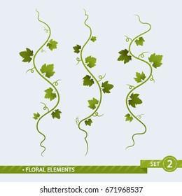 Floral Elements. Grape Vines - Vector Set