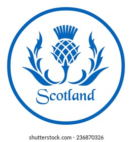 Floral emblem of Scotland, the thistle
