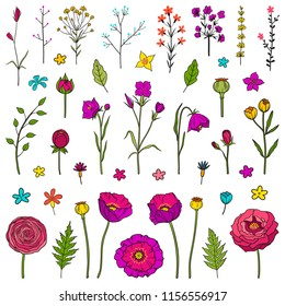 Floral hand drawn elements. Set of different flowers and leaves. Boho style theme. For printing on sticky paper and for use in your design. Colorful bright vector illustration. Isolated on white