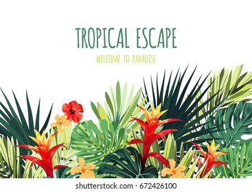 Floral horizontal postcard design with guzmania and hibiscus flowers, monstera and royal palm leaves. Exotic hawaiian vector background.