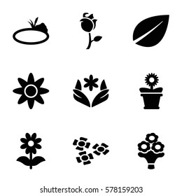 floral icon. Set of 9 floral filled icons such as flower, leaf, flower pot, rose, bouquet flower