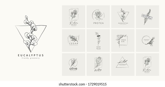 Floral logo and branch. Hand drawn wedding herb, plant and monogram with elegant leaves for invitation save the date card design. Botanical rustic trendy greenery vector illustration