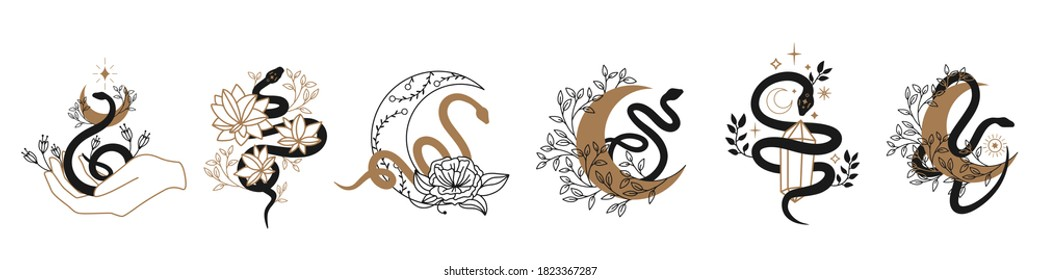 Floral magic Snake. Snake and wildflowers. Halloween and boho Floral design. Botanical elements. Rustic decorative plants. Black silhouette snake. Minimal snakes for logo, tattoo