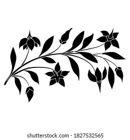 Floral ornament. Branch of nightshade plant. Botanical design. Black and white silhouette.