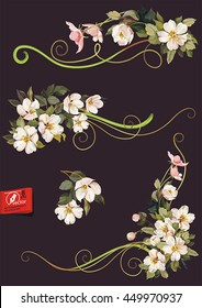 Floral ornament graphic elements for design. Vector illustration with blossoming apple tree