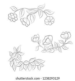 Floral ornaments hand drawn. Vector illustration