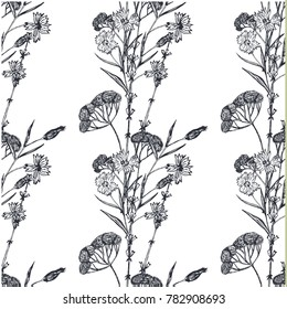 Floral pattern with field flowers and lavender. Hand drawn flowers sketch. Vector illustration.