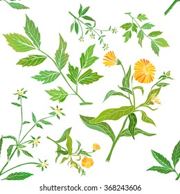 Floral pattern with medicinal plants
