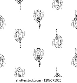 Floral pattern with protea black sketch. Seamless background for fabric design. Cute and beautiful outline vector illustration on white backdrop.