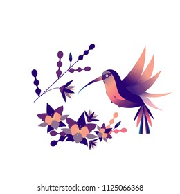Floral round flat illustration  with palm leaves, exotic flowers and hummingbirds on a white background. Vector illustration.