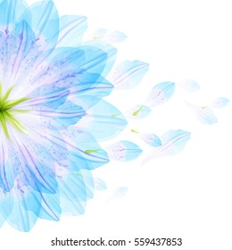 Floral round pattern of blue flower petals