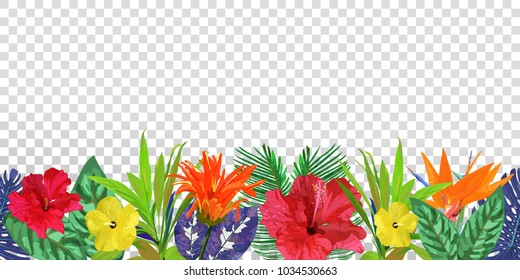 Floral seamless border. Background with isolated colorful hand drawn tropical flowers and leaves on transparent background. Design for invitation, prints and cards. Vector illustration.