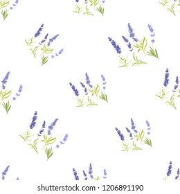 Floral seamless with lavender greenery. Vector watercolor vintage sketch. Botanical colorful illustration on white background. Pattern or card design.