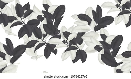 Floral seamless pattern, black and white Ficus Elastica / rubber plant on white background