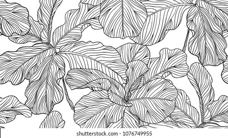 Floral seamless pattern, black and white fiddle leaf fig on white background, line art ink drawing