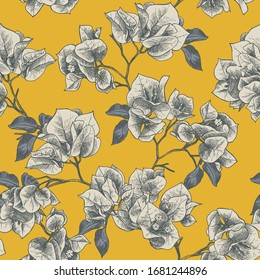 Floral seamless pattern with bougainvillea flowers. Hand drawn vector illustration.