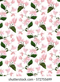 Floral seamless pattern with bougainvillea vector illustration
