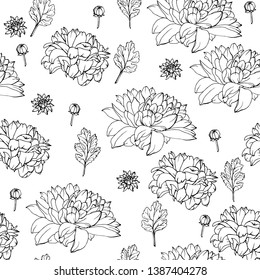 Floral seamless pattern with chrysanthemums. Black and white. Monochrome. Pattern for wedding stationary, fashion, wallpapers, greetings, background for web pages. Flower vector background.
