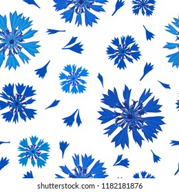 Floral seamless pattern of cornflowers.