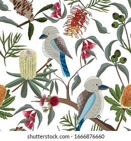 floral seamless pattern of hand drawn australia kookaburra and gum tree and native flower,protea with gravellia on white background