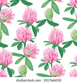 Floral seamless pattern with red clover isolated on white background. Cute pink flowers. Summer concept. Design element for textile, fabrics, scrapbooking, wallpaper and etc. Vector illustration.