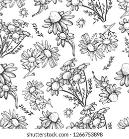 Floral seamless pattern in vintage style. Various herbs.Vector botanical illustration. Black and white.