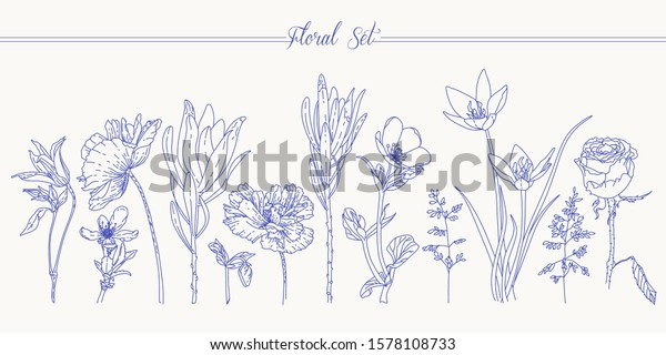 Floral Set Flowers Line Art Simple Stock Vector Royalty Free 1578108733