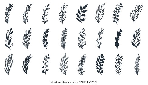 Floral set of hand drawn botanic  elements. Branches, leaves, flowers. Perfect for invitations, greeting cards design, fabric etc. Vector illustration