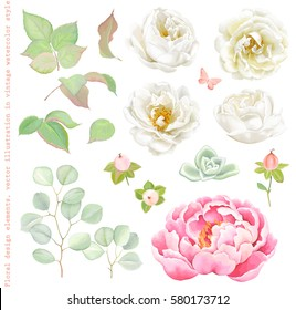 Floral set with white Roses, pink Peony, green leaves and Succulent, branches Silver Dollar Eucalyptus, Hypericum Berries and flying butterfly. Elegant vector illustration in romantic style.