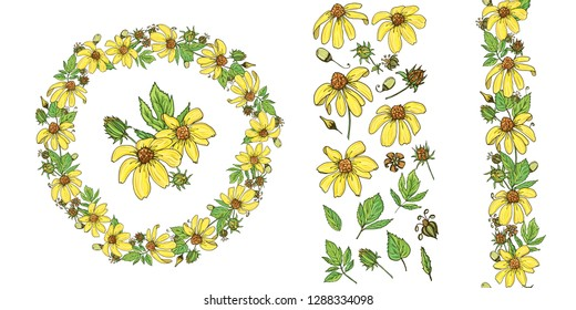 Floral summer elements with cute bunches of rudbeckia. For romantic design, announcements, greeting cards, posters, advertisement. - Векторная графика