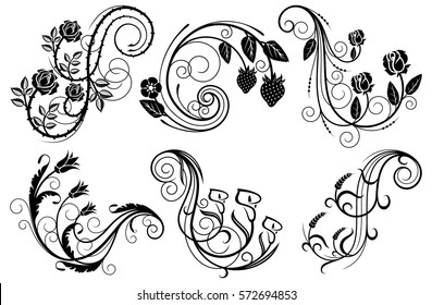 Floral swirls design elements. Vector illustration.